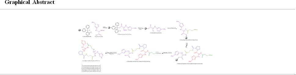 The synthesis of cyclic Carnosine analogues